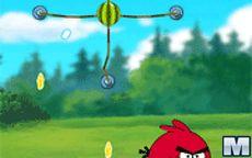 Angrybird Adventure
