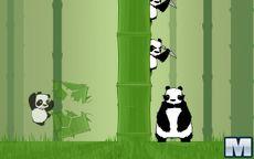 Kongfu Panda
