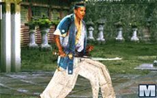 Kung Fu Election