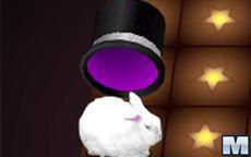 Houdini's Hat