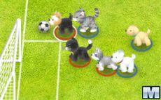 Fútbol con mascotas