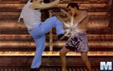 Fight Masters - Muay Thai