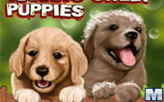Hanna's Sweet Puppies
