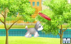 Pepper's Frisbee Fun