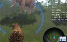 Juego Leopard In The Wild - Matar animales siendo un leopardo