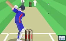 World Cricket Slog Master