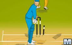 IPL Cricket Ultimate