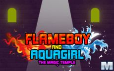 Flameboy and Watergirl:The Magic Temple