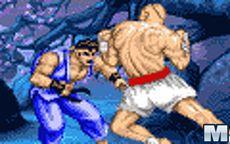 Street Fighter Ii - Ryu Vs Sagat