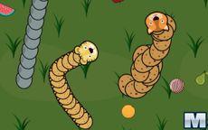 Forest Slither Snake