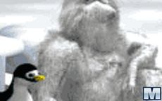 Pingu-throw