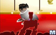 Juego Petz Fashion - Cuida baña o peina a perros y gatos