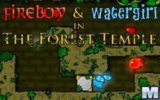 Fuego y Agua ~ el templo del bosque